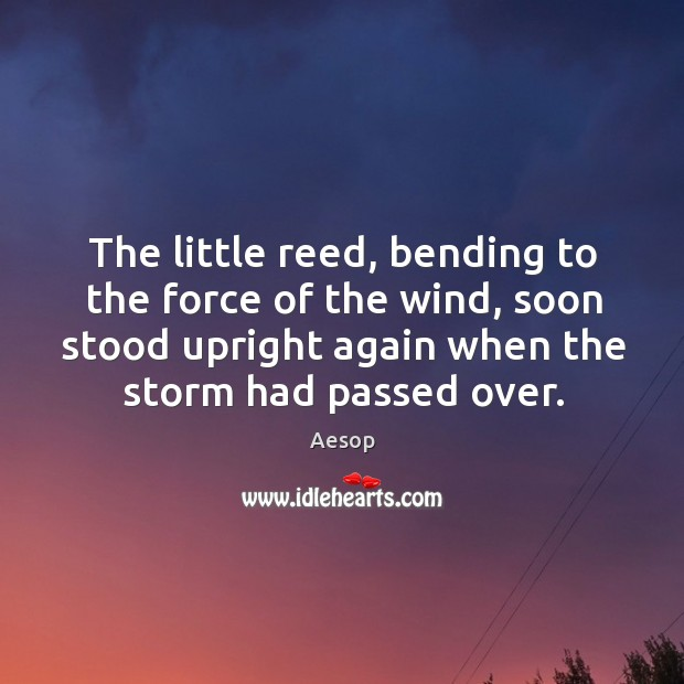 Image, The little reed, bending to the force of the wind, soon stood upright again when the storm had passed over.