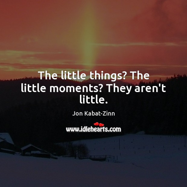 The little things? The little moments? They aren't little. Jon Kabat-Zinn Picture Quote
