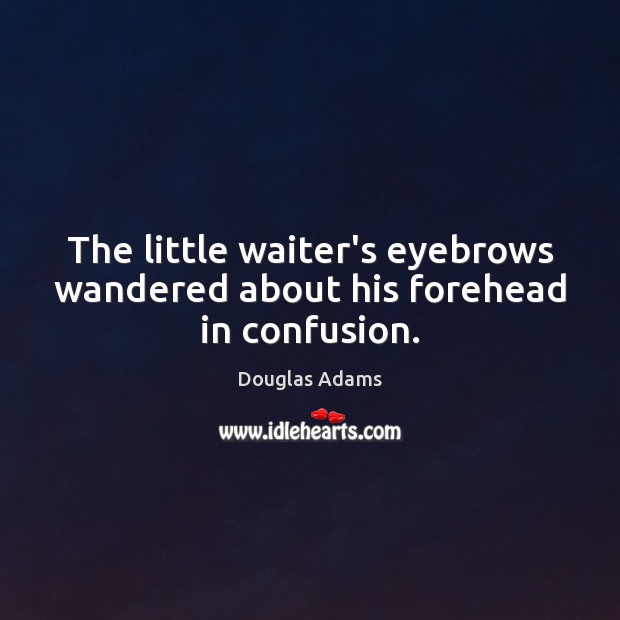 The little waiter's eyebrows wandered about his forehead in confusion. Douglas Adams Picture Quote