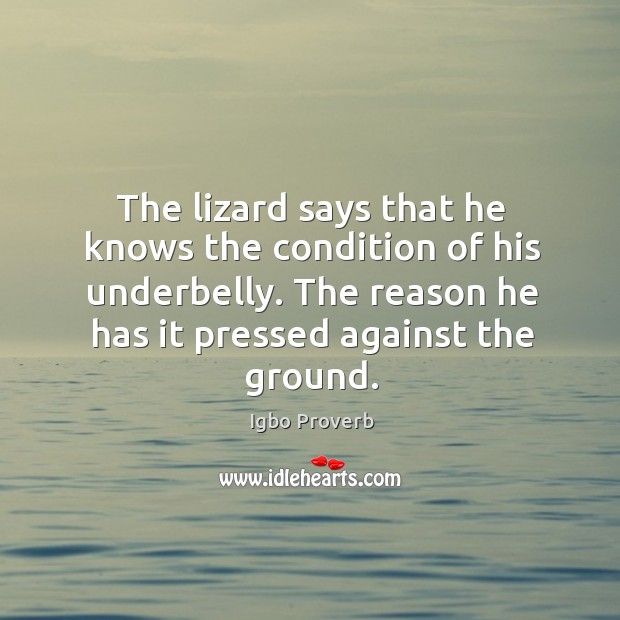 The lizard says that he knows the condition of his underbelly. Igbo Proverbs Image
