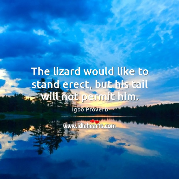 The lizard would like to stand erect, but his tail will not permit him. Igbo Proverbs Image