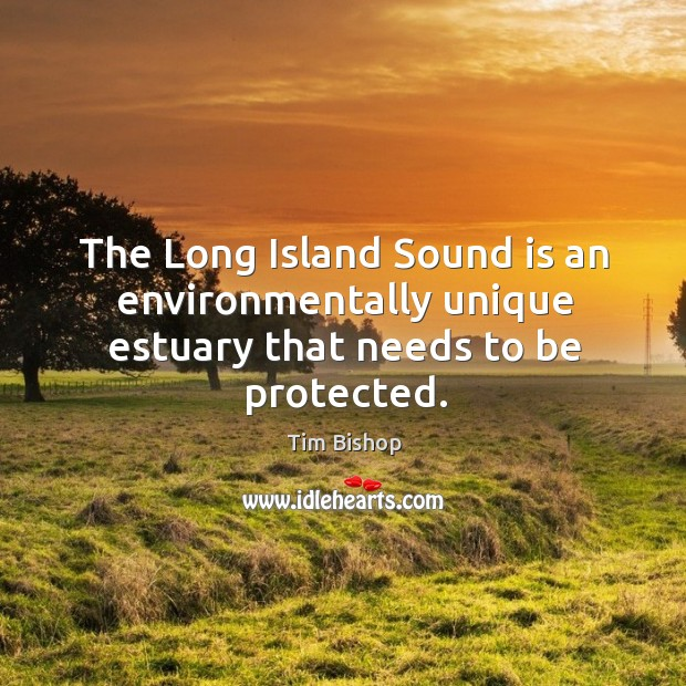 Image, The long island sound is an environmentally unique estuary that needs to be protected.