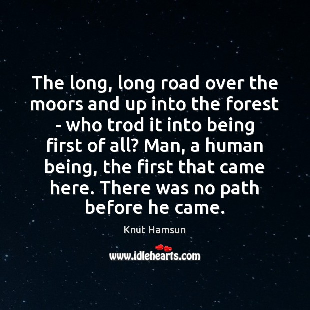 The long, long road over the moors and up into the forest Image