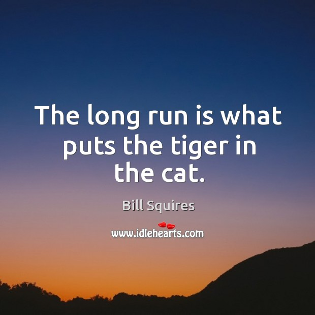 The long run is what puts the tiger in the cat. Image