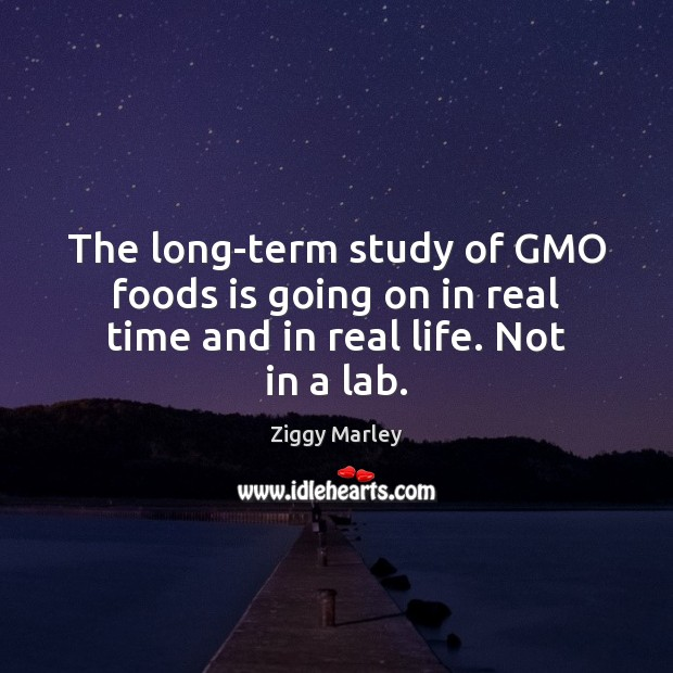 The long-term study of GMO foods is going on in real time and in real life. Not in a lab. Ziggy Marley Picture Quote