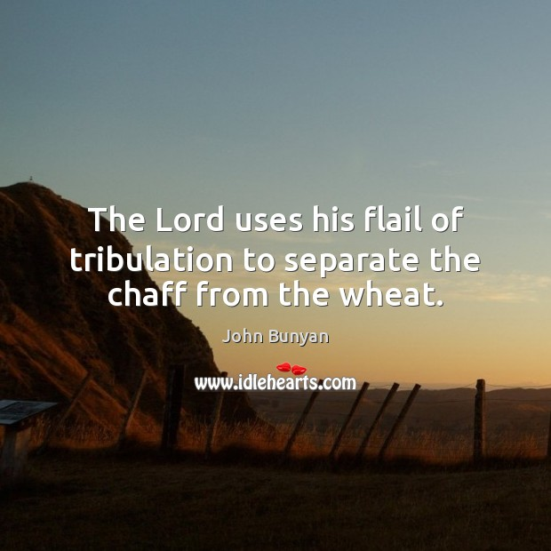 The Lord uses his flail of tribulation to separate the chaff from the wheat. John Bunyan Picture Quote