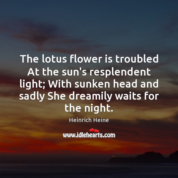 The lotus flower is troubled At the sun's resplendent light; With sunken Heinrich Heine Picture Quote