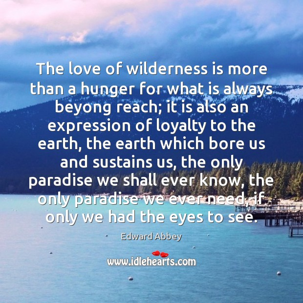 The love of wilderness is more than a hunger for what is Image