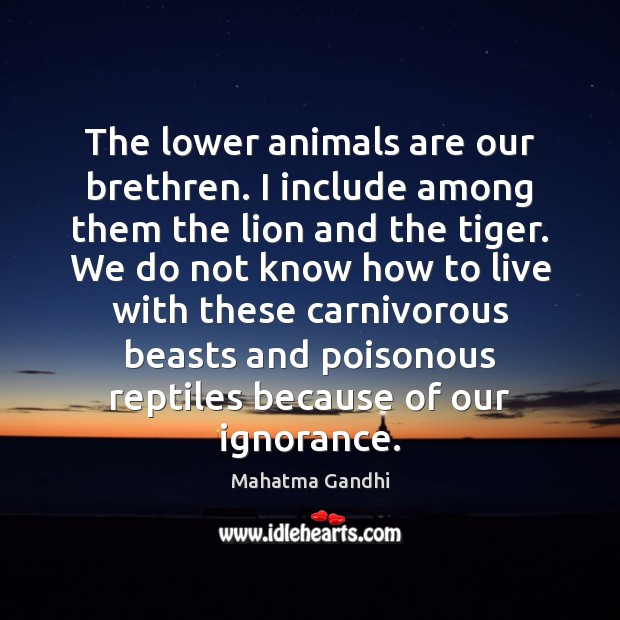 Image, The lower animals are our brethren. I include among them the lion