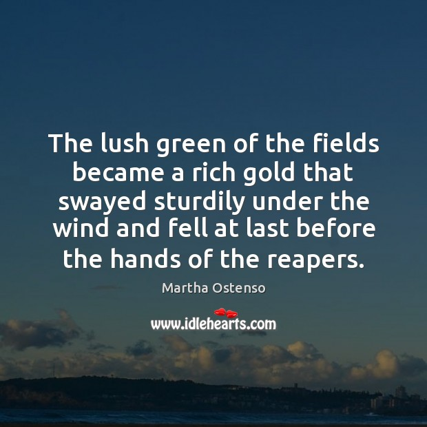 The lush green of the fields became a rich gold that swayed Image