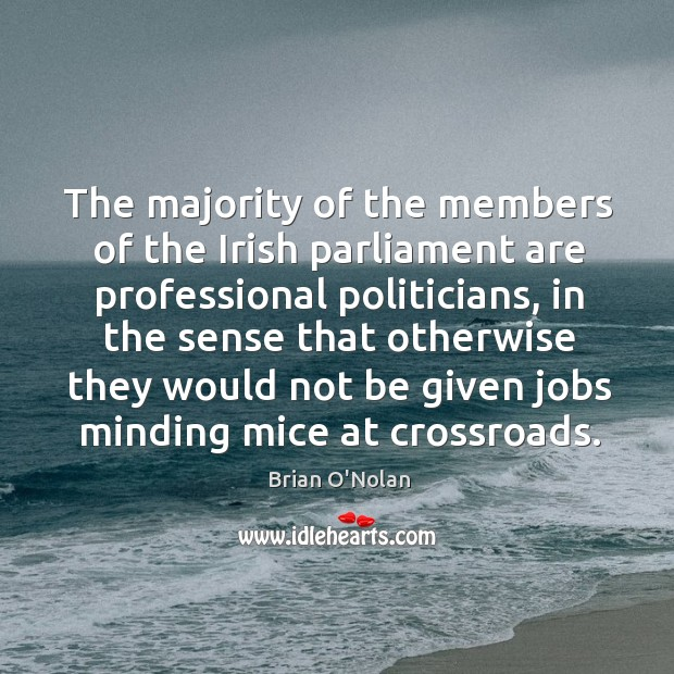 The majority of the members of the irish parliament are professional politicians Image