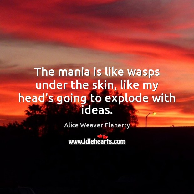 Image, The mania is like wasps under the skin, like my head's going to explode with ideas.