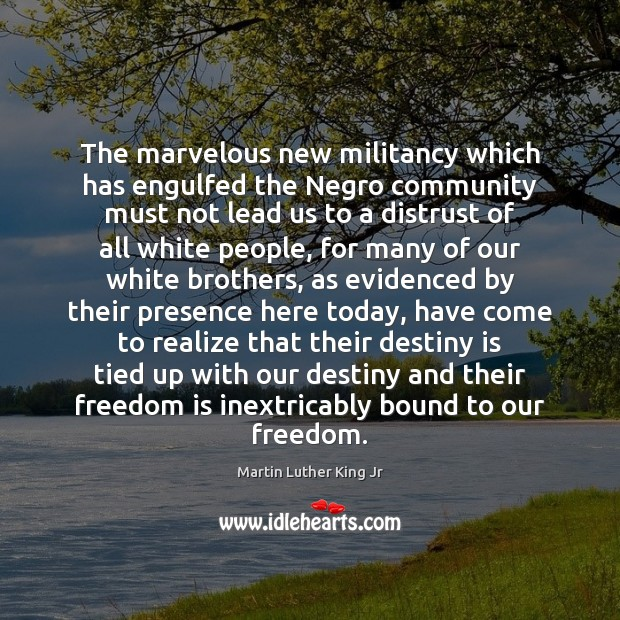 The marvelous new militancy which has engulfed the Negro community must not Martin Luther King Jr Picture Quote