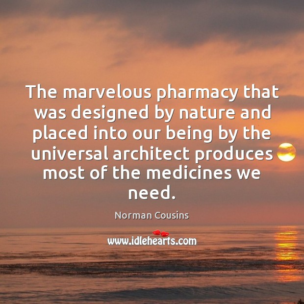The marvelous pharmacy that was designed by nature and placed into our Norman Cousins Picture Quote