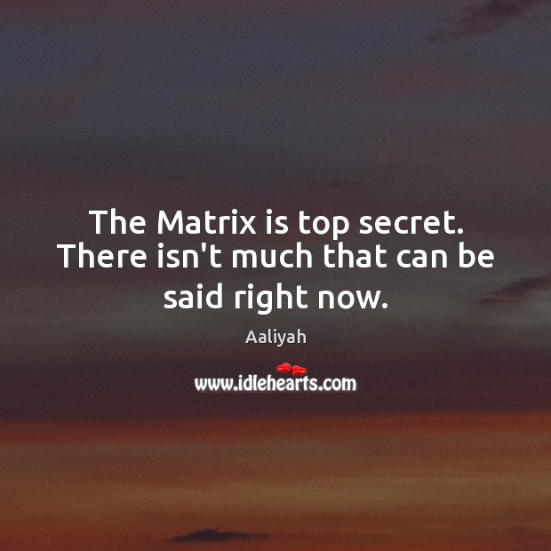 The Matrix is top secret. There isn't much that can be said right now. Aaliyah Picture Quote
