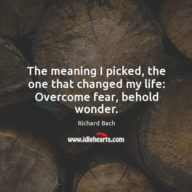 The meaning I picked, the one that changed my life: overcome fear, behold wonder. Image
