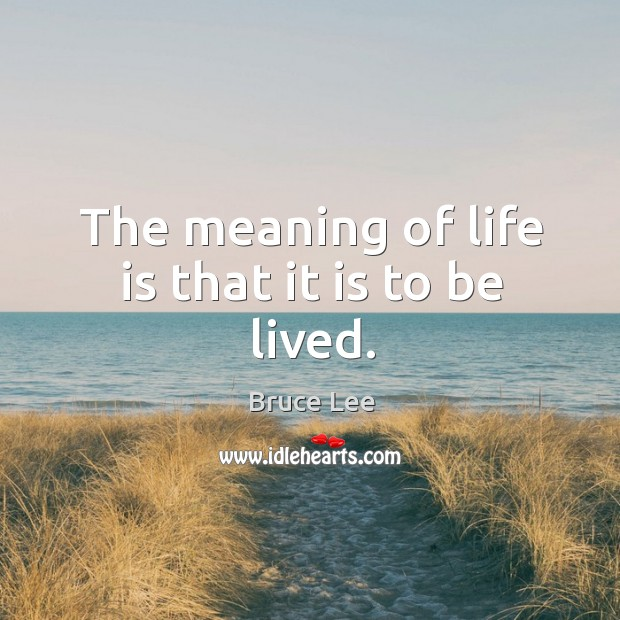 The meaning of life is that it is to be lived. Image