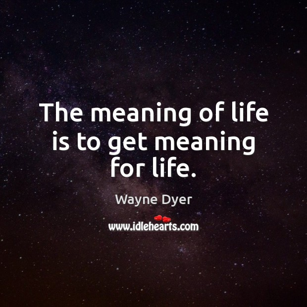Image, The meaning of life is to get meaning for life.