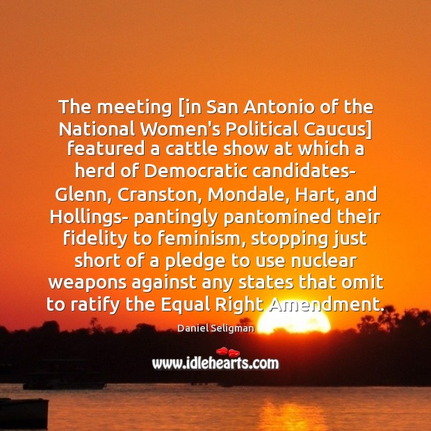 The meeting [in San Antonio of the National Women's Political Caucus] featured Image