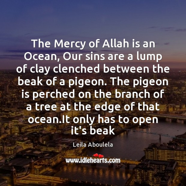 Image, The Mercy of Allah is an Ocean, Our sins are a lump