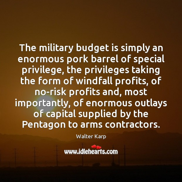 The military budget is simply an enormous pork barrel of special privilege, Image