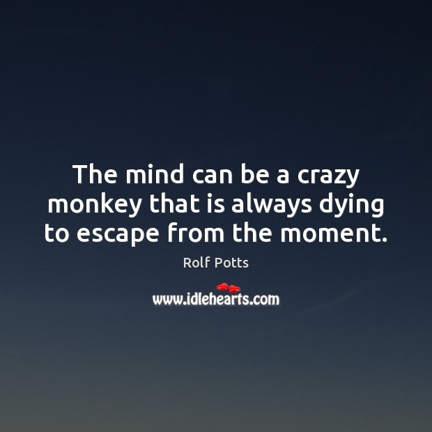 Image, The mind can be a crazy monkey that is always dying to escape from the moment.