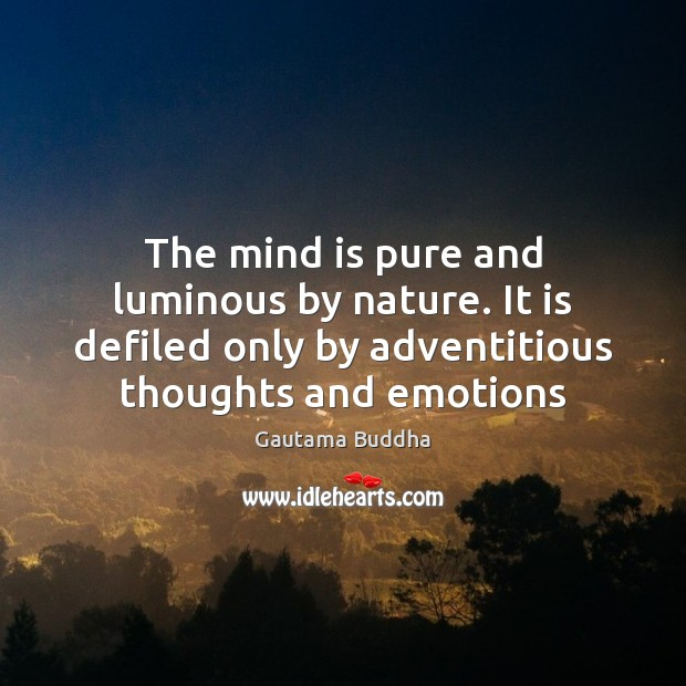 The mind is pure and luminous by nature. It is defiled only Image