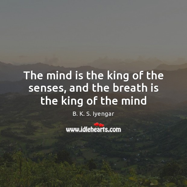 The mind is the king of the senses, and the breath is the king of the mind Image