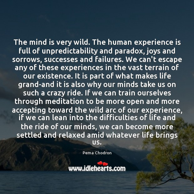 Image, The mind is very wild. The human experience is full of unpredictability