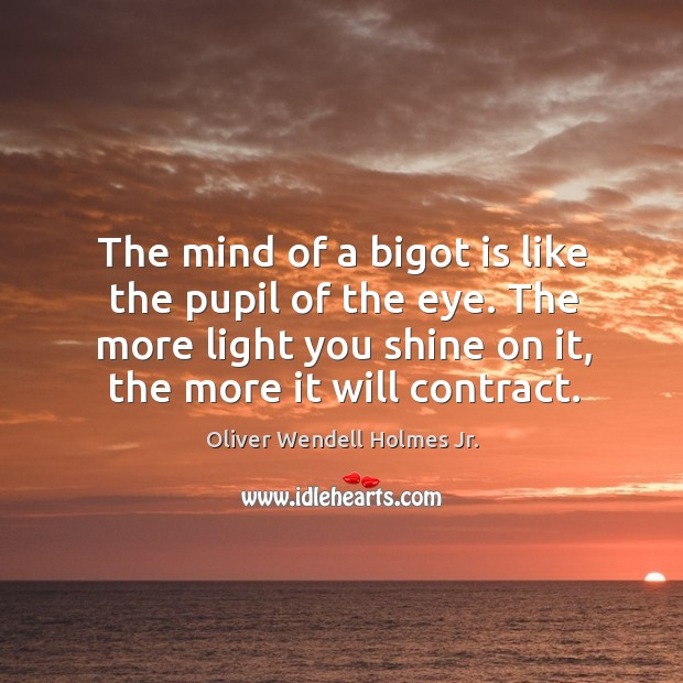 The mind of a bigot is like the pupil of the eye. The more light you shine on it, the more it will contract. Image