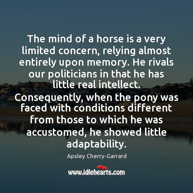 The mind of a horse is a very limited concern, relying almost Image