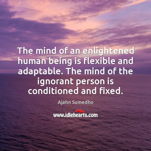 The mind of an enlightened human being is flexible and adaptable. The Image