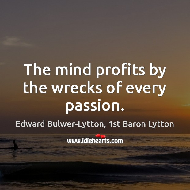 Image, The mind profits by the wrecks of every passion.