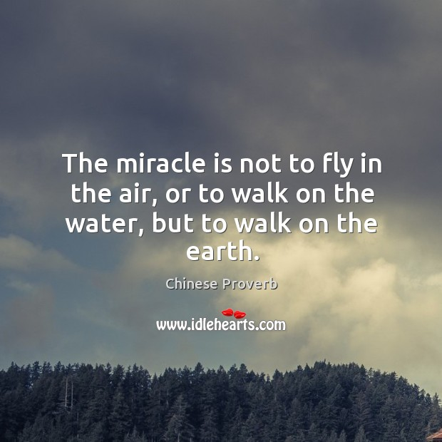 Image, The miracle is not to fly in the air, or to walk on the water, but to walk on the earth.