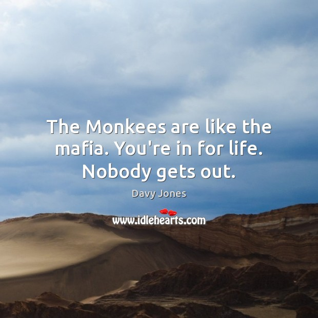 Picture Quote by Davy Jones