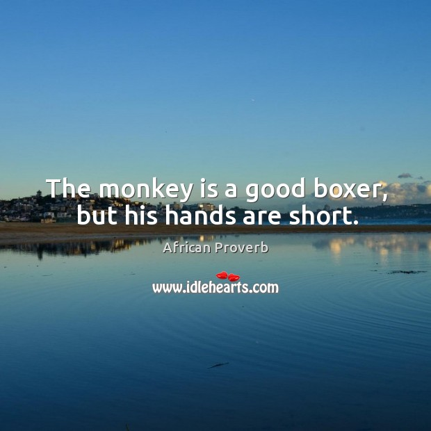 Image, The monkey is a good boxer, but his hands are short.