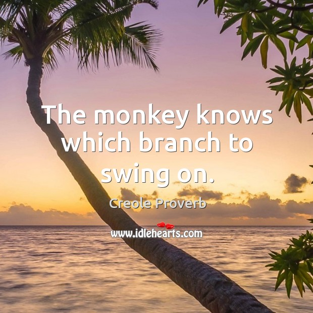 The monkey knows which branch to swing on. Creole Proverbs Image