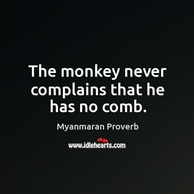 The monkey never complains that he has no comb. Myanmaran Proverbs Image