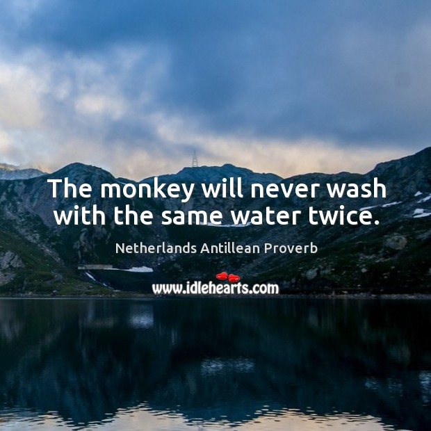 The monkey will never wash with the same water twice. Netherlands Antillean Proverbs Image