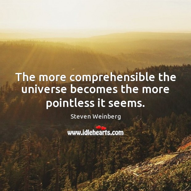 The more comprehensible the universe becomes the more pointless it seems. Image