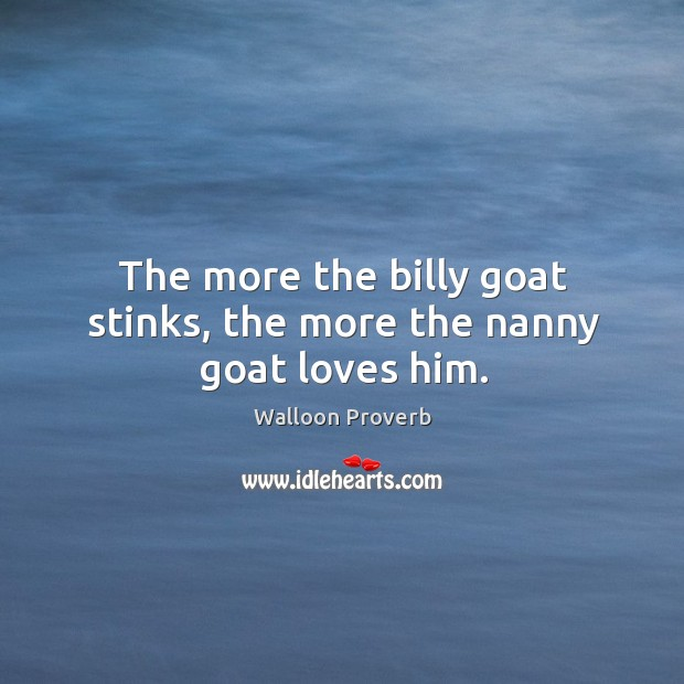 The more the billy goat stinks, the more the nanny goat loves him. Walloon Proverbs Image