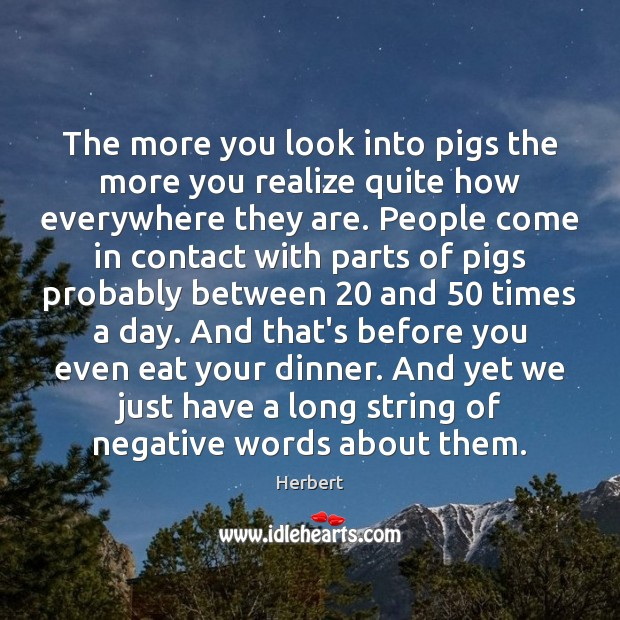 Image, The more you look into pigs the more you realize quite how