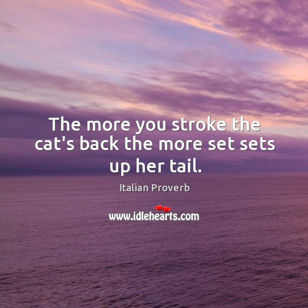 Image, The more you stroke the cat's back the more set sets up her tail.