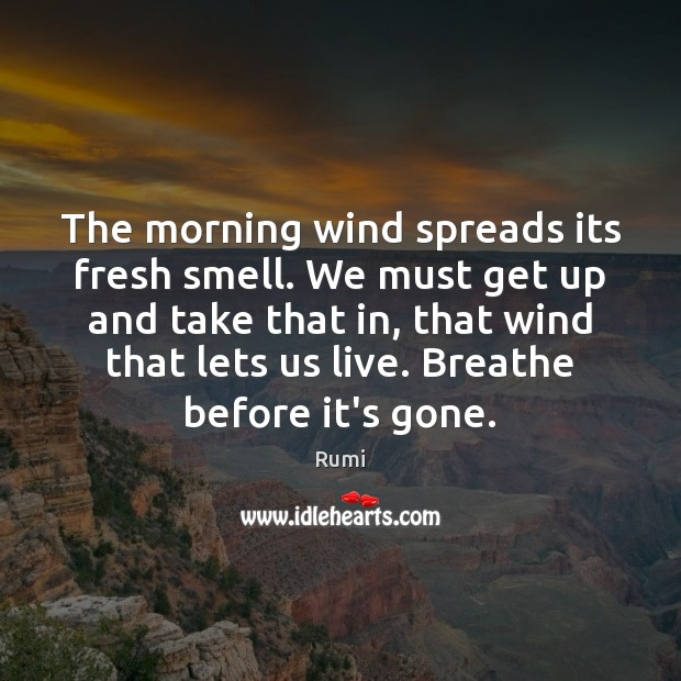 The morning wind spreads its fresh smell. We must get up and Image