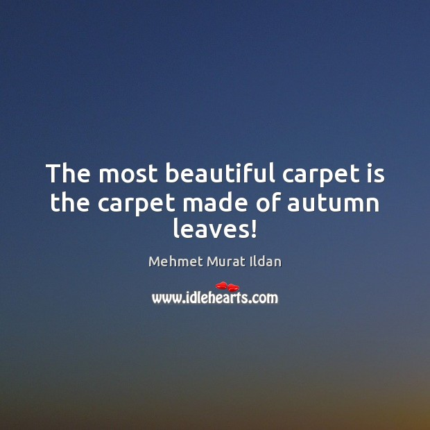 Image, The most beautiful carpet is the carpet made of autumn leaves!