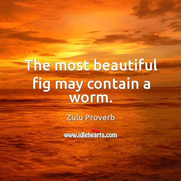 The most beautiful fig may contain a worm. Zulu Proverbs Image