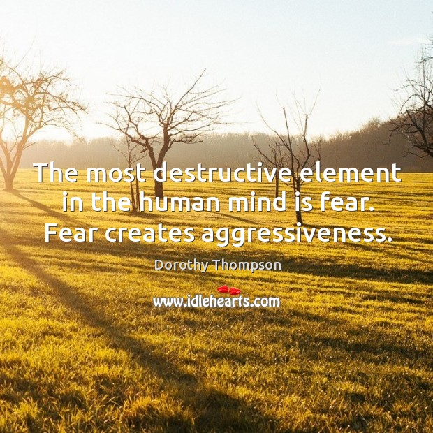 The most destructive element in the human mind is fear. Fear creates aggressiveness. Image