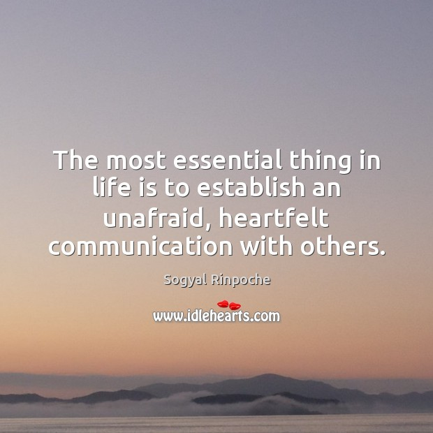 The most essential thing in life is to establish an unafraid, heartfelt Sogyal Rinpoche Picture Quote