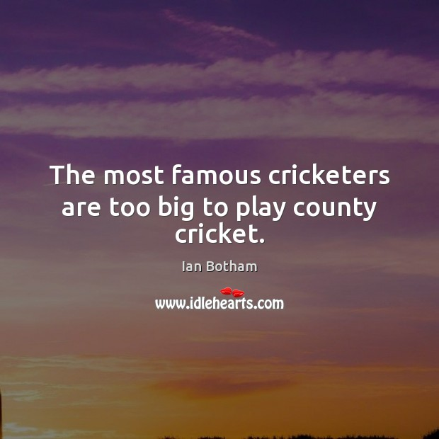 The most famous cricketers are too big to play county cricket. Image
