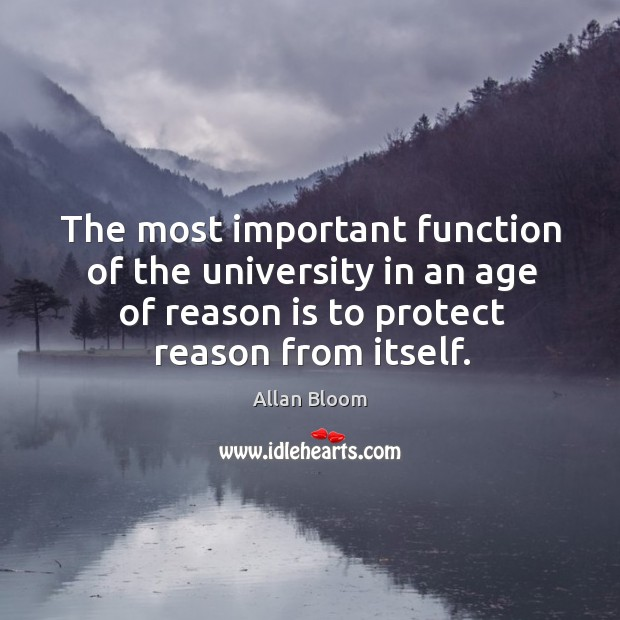 Image, The most important function of the university in an age of reason is to protect reason from itself.